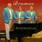 Disco 2010: Brumas