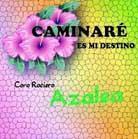 Disco 2011: Coro Rociero Azalea